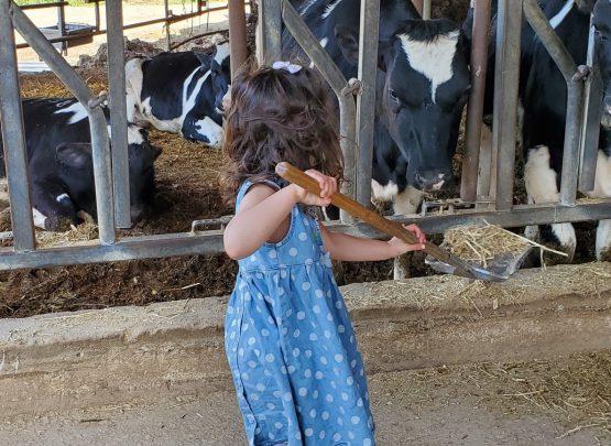 ילדה מאכילה באתים